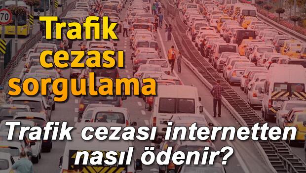 Plakadan trafik ceza sorgulama işlemi nasıl yapılır? Trafik cezası internetten nasıl ödenir?