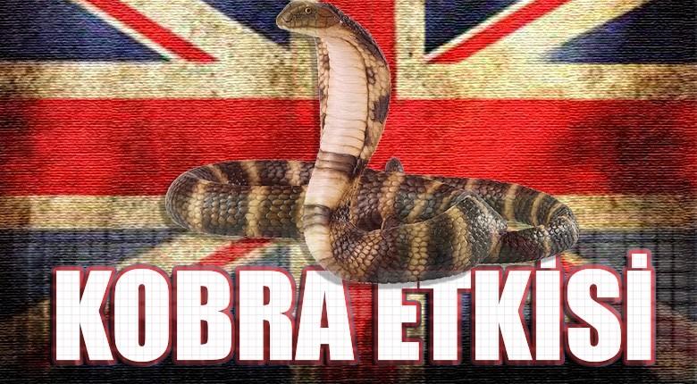 Kobra etkisi