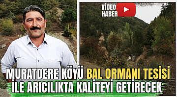 Muratdere Köyü Bal Ormanı tesisi ile arıcılıkta kaliteyi getirecek