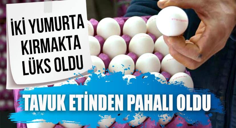 Yumurtanın Fiyatı Tavuk Etini Solladı