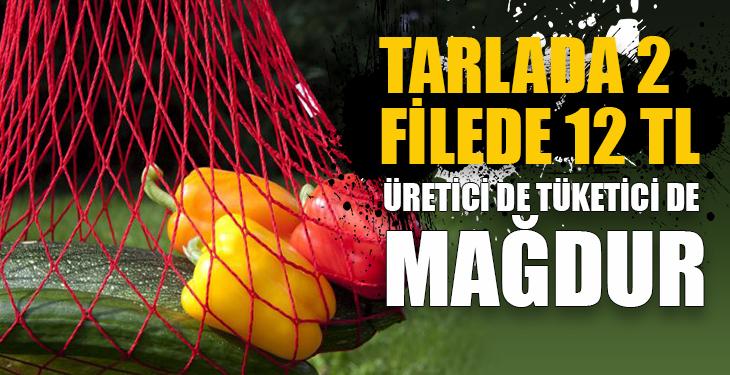 Tarlada 2 filede 12 TL