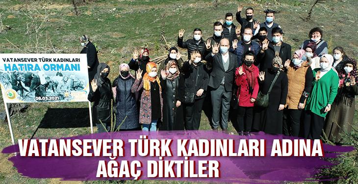 Vatansever Türk kadını hatıra ormanı için ağaç diktiler
